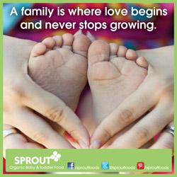 organic, baby food, toddler food, natural, toddler meals, vegetables, fruit, yogurt, meals, snacks, yogurt bites, on the go, all natural